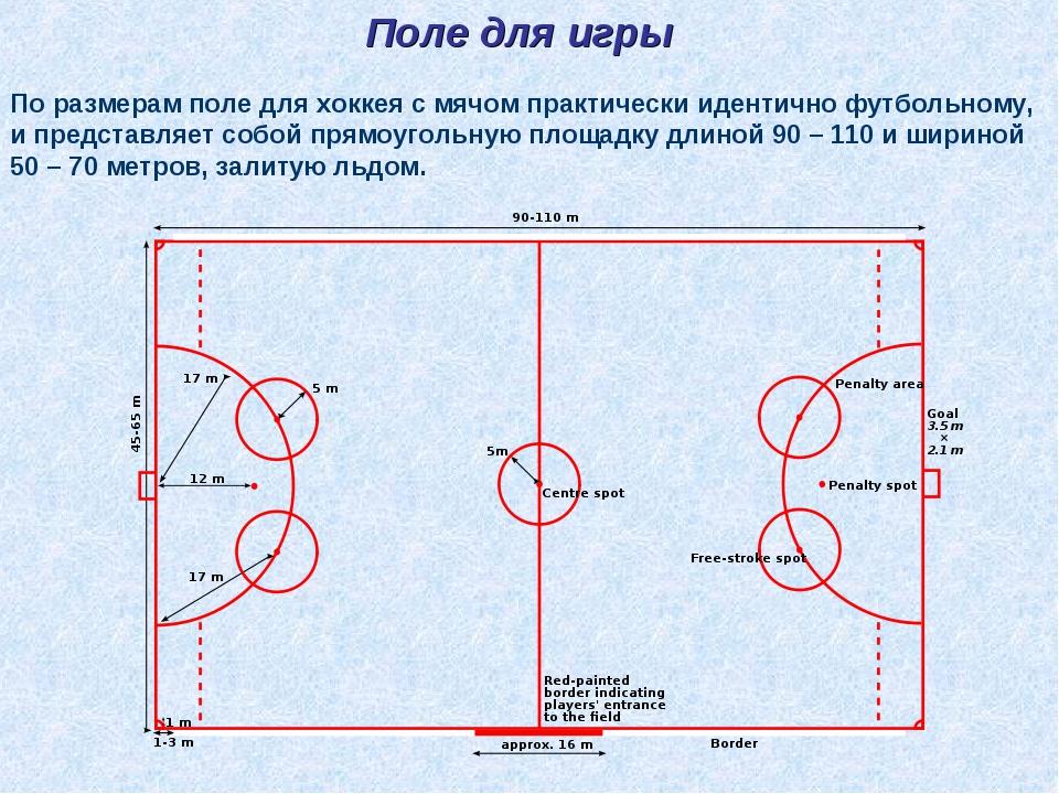 Поле для игры По размерам поле для хоккея с мячом практически идентично футбо...