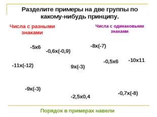 Разделите примеры на две группы по какому-нибудь принципу. -5х6 -0,6х(-0,9) -