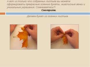 А вот из только что собранных листьев вы можете сформировать прекрасные осен