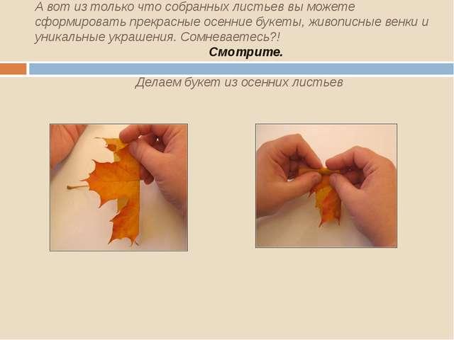 А вот из только что собранных листьев вы можете сформировать прекрасные осен...