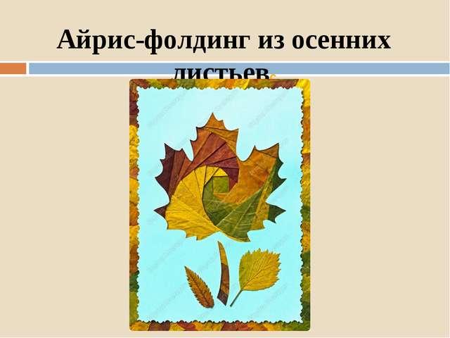 Айрис-фолдинг из осенних листьевc