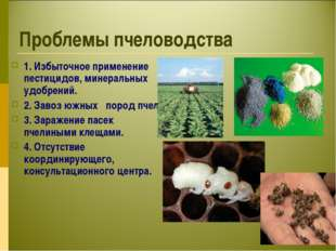 Проблемы пчеловодства 1. Избыточное применение пестицидов, минеральных удобре