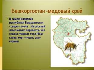 Башкортостан -медовый край В самом названии республики Башкортостан «сидит» п
