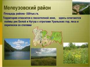 Мелеузовский район Площадь района -320тыс.га. Территория относится к лесостеп