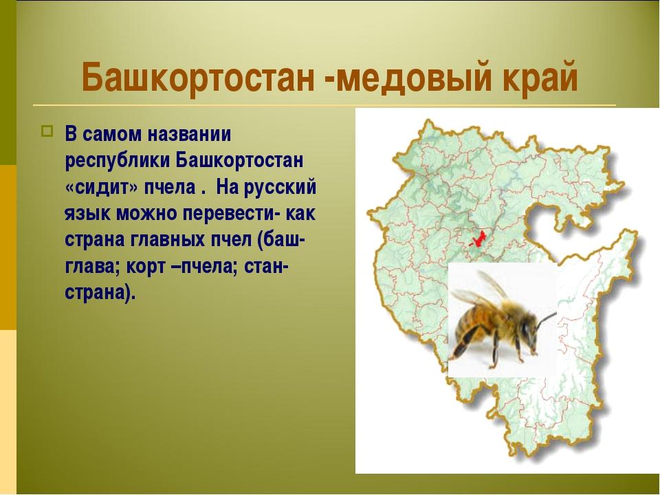 Башкортостан -медовый край В самом названии республики Башкортостан «сидит» п...