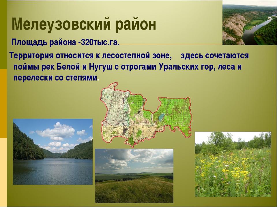 Мелеузовский район Площадь района -320тыс.га. Территория относится к лесостеп...