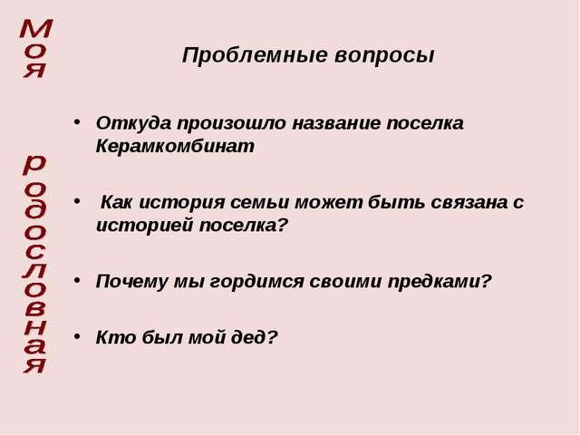 Проблемные вопросы Откуда произошло название поселка Керамкомбинат Как истори...