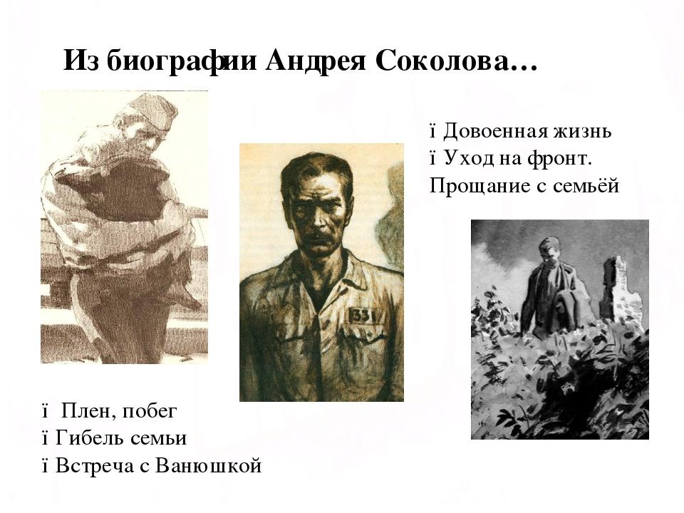 Из биографии Андрея Соколова… ● Плен, побег ●Гибель семьи ●Встреча с Ванюшкой...