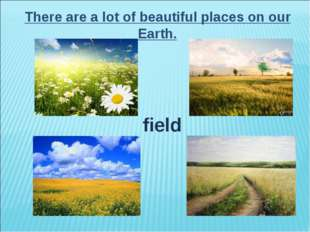 There are a lot of beautiful places on our Earth. field
