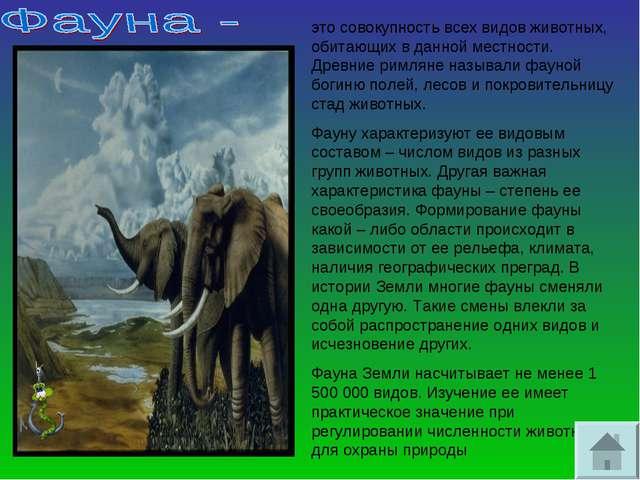 это совокупность всех видов животных, обитающих в данной местности. Древние р...