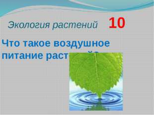 Экология растений    10 Что такое воздушное питание растений?