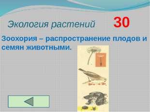 Экология растений       30