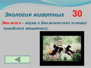 Экология животных     30 Этология – наука о биологических основах поведения жив