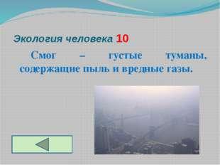 Экология человека 10 Смог – густые туманы, содержащие пыль и вредные газы.