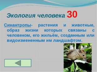 Экология человека 30