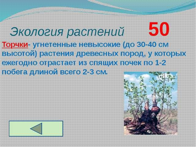 Экология растений       50