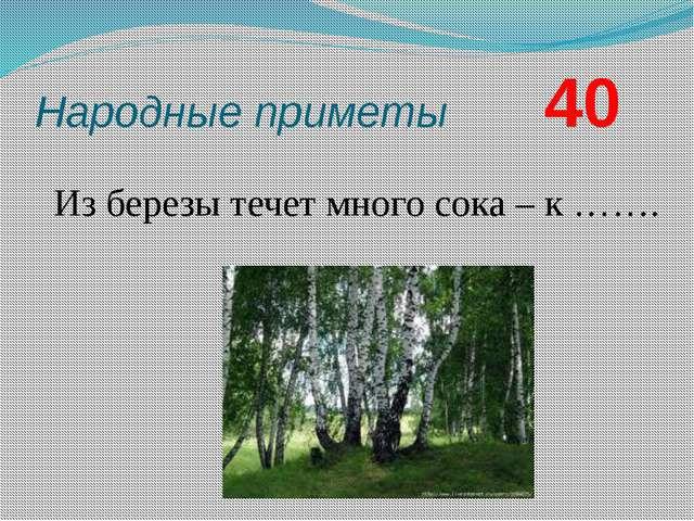Народные приметы        40