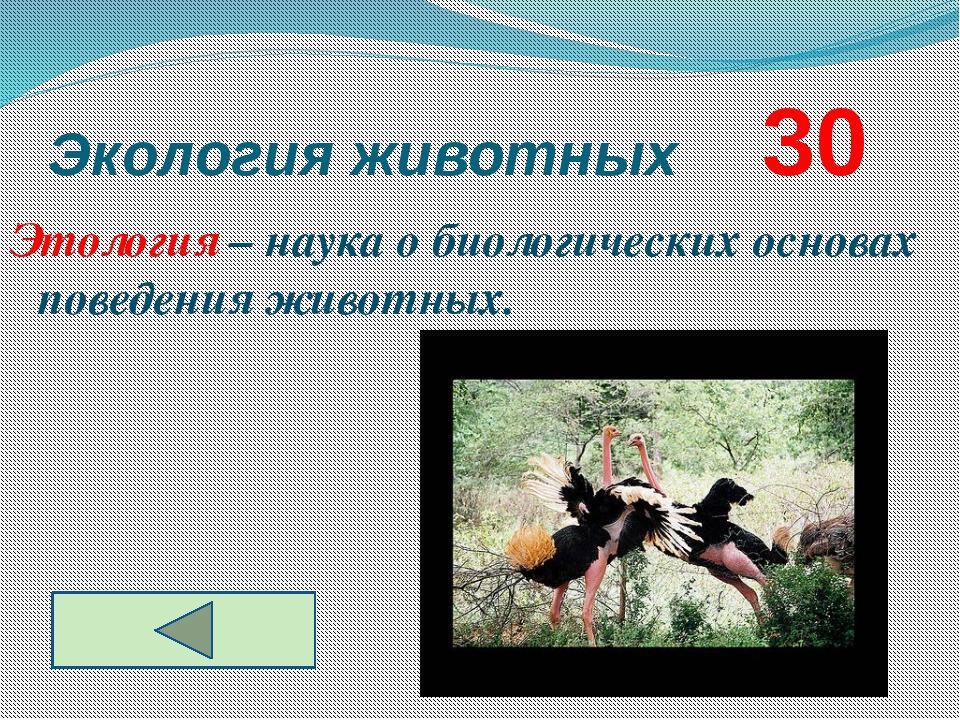 Экология животных     30 Этология – наука о биологических основах поведения...