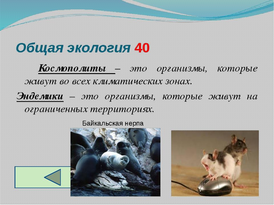 Общая экология 40 Космополиты – это организмы, которые живут во всех климат...