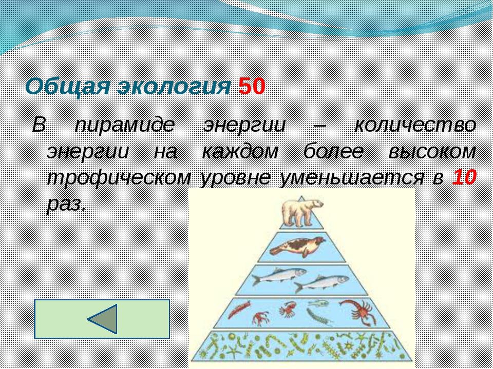 Общая экология 50
