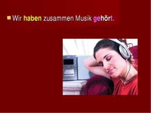 Wir haben zusammen Musik gehört.