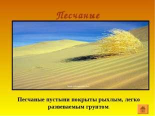Песчаные Песчаные пустыни покрыты рыхлым, легко развеваемым грунтом.