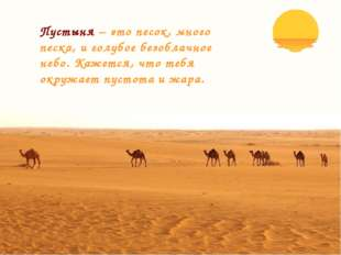Пустыня – это песок, много песка, и голубое безоблачное небо. Кажется, что те