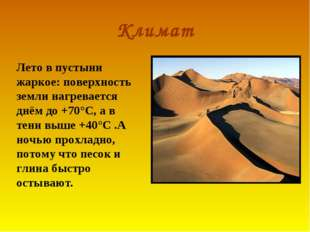 Климат Лето в пустыни жаркое: поверхность земли нагревается днём до +70°С, а