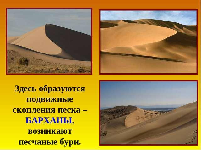 Здесь образуются подвижные скопления песка – БАРХАНЫ, возникают песчаные бури.