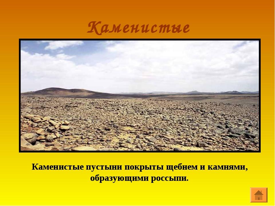 Каменистые Каменистые пустыни покрыты щебнем и камнями, образующими россыпи.