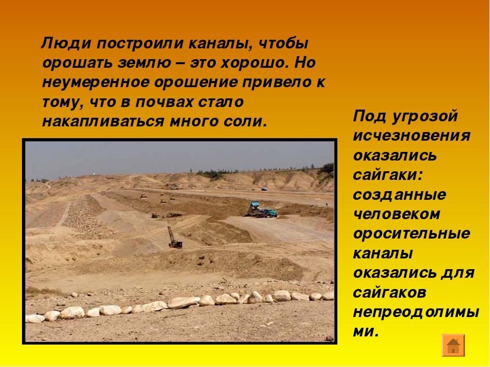 Люди построили каналы, чтобы орошать землю – это хорошо. Но неумеренное ороше...