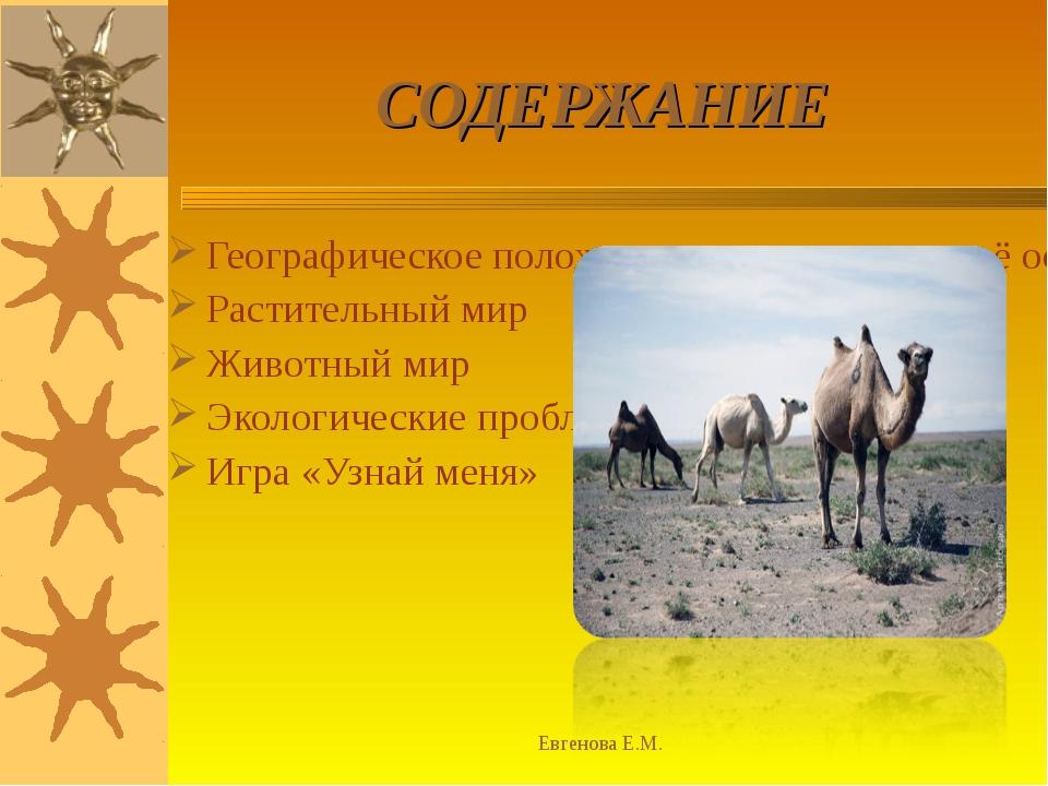 Евгенова Е.М. СОДЕРЖАНИЕ Географическое положение зоны пустынь и её особеннос...
