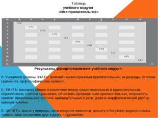 Таблица учебного модуля «Имя прилагательное» Результаты функционирования учеб