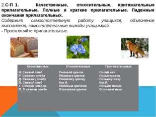 2.С-П 1. Качественные, относительные, притяжательные прилагательные. Полные и