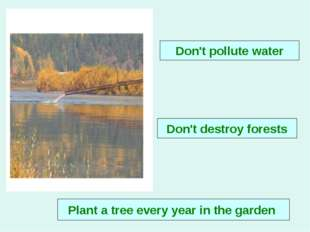 Don't destroy forests Don't pollute water Plant a tree every year in the garden