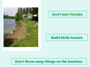 Don't throw away things on the beaches. Don't burn forests. Build birds houses
