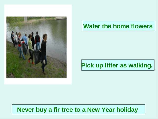 Never buy a fir tree to a New Year holiday Water the home flowers Pick up lit...