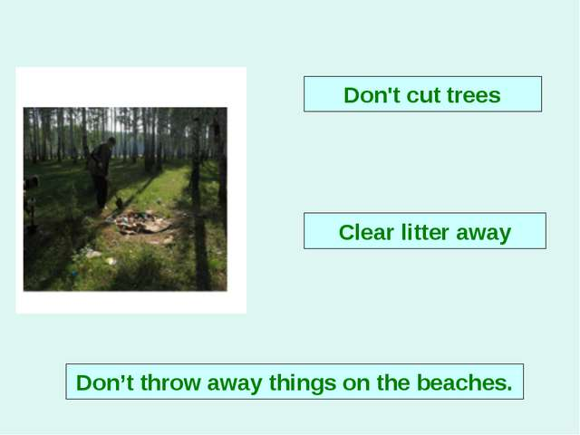 Don't cut trees Clear litter away Don't throw away things on the beaches.
