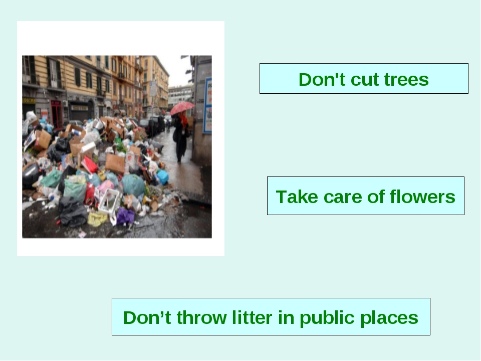 Take care of flowers Don't cut trees Don't throw litter in public places