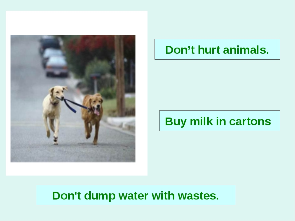 Don't hurt animals. Buy milk in cartons Don't dump water with wastes.
