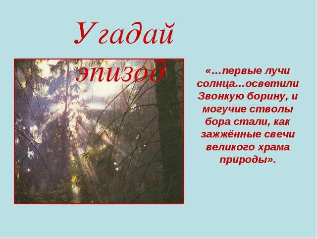 Угадай эпизод «…первые лучи солнца…осветили Звонкую борину, и могучие стволы...