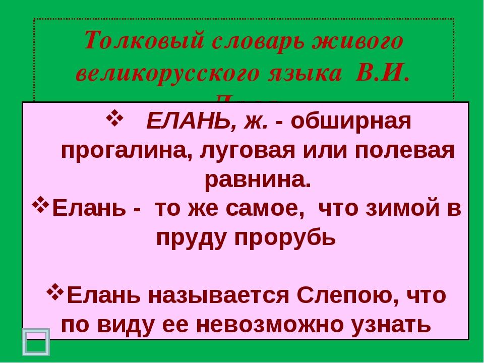 Толковый словарь живого великорусского языка В.И. Даля ЕЛАНЬ, ж. - обширная п...