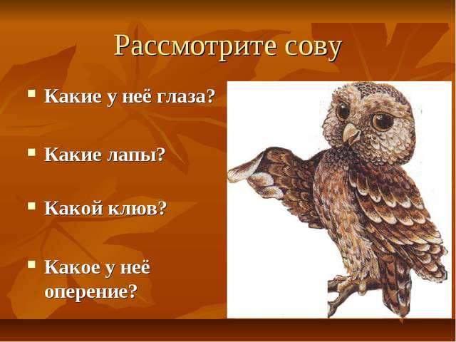 Рассмотрите сову Какие у неё глаза? Какие лапы? Какой клюв? Какое у неё опере...
