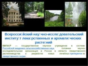Всеросси́йский нау́чно-иссле́довательский институ́т лека́рственных и аромати́