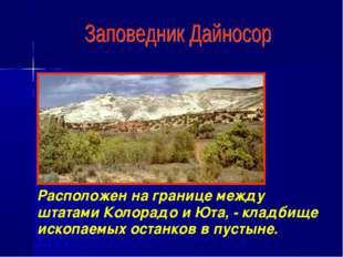 Расположен на границе между штатами Колорадо и Юта, - кладбище ископаемых ост