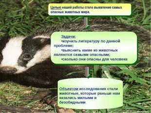 Целью нашей работы стало выявление самых опасных животных мира. Задачи: изучи