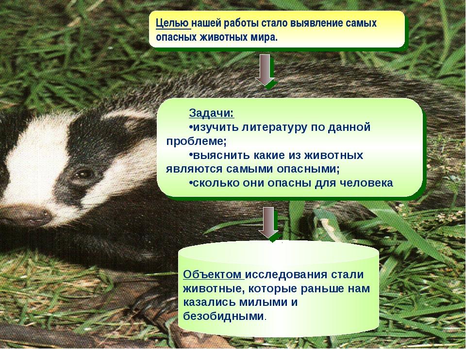 Целью нашей работы стало выявление самых опасных животных мира. Задачи: изучи...