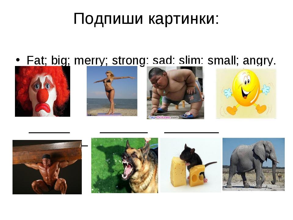 Подпиши картинки: Fat; big; merry; strong; sad; slim; small; angry. ______ __...