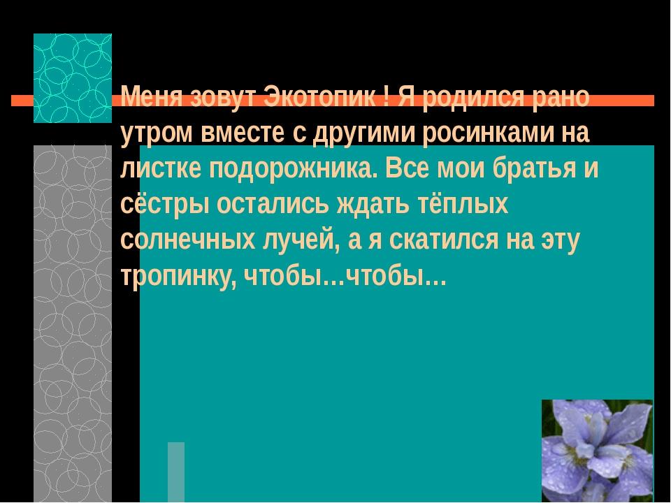 Меня зовут Экотопик ! Я родился рано утром вместе с другими росинками на лис...