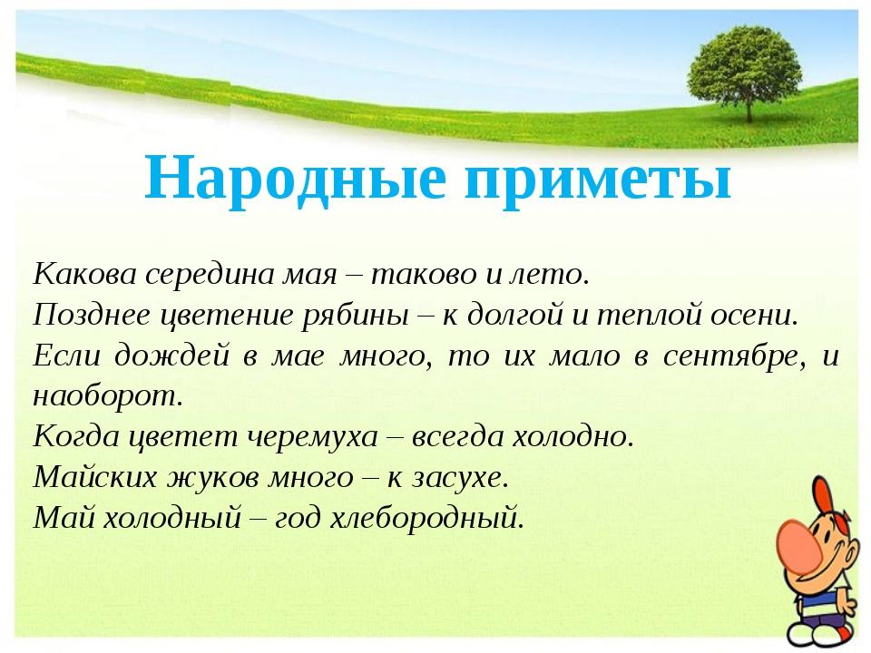 Народные приметы Какова середина мая – таково и лето. Позднее цветение рябины...